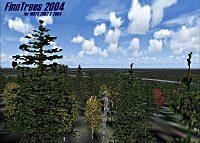 FinnTrees 2004